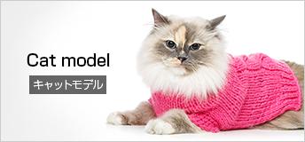 Cat model キャットモデル